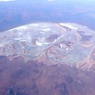 Australian Salt Lake by Trish Meyer