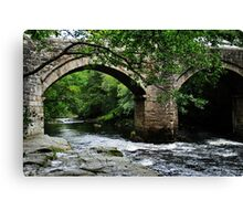 Bridge at Holne Canvas Print
