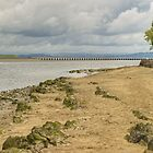 The Kent Estuary by Jamie  Green