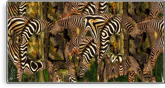 A Confusion of Zebras by Wayne King