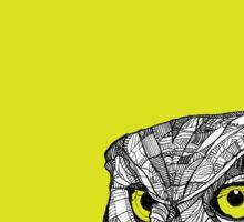 Ornate Owl Sticker