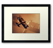 On the Wing II Framed Print