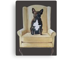 Jimmy French bulldog with attitude Canvas Print