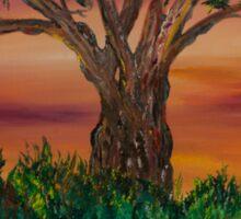 Bottle Brush Tree at sunset Sticker