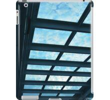 Blue Roof iPad Case/Skin