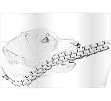Jack and the rope... Pancill sketch - Jack russel Puppy Poster