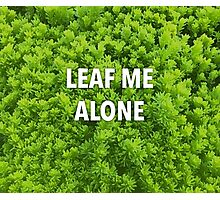 Leaf Me Alone | Leaf and Plant Photocollage | Garden and Nature Photographic Print
