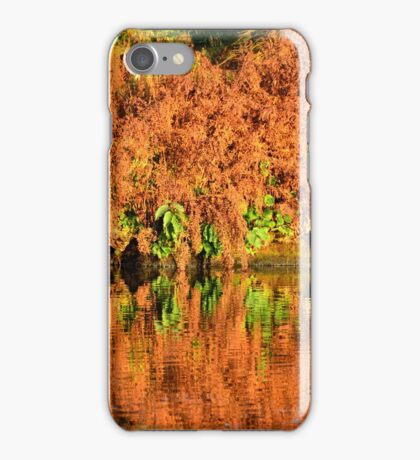 Reflections of the Fall iPhone Case/Skin