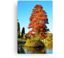 Tree and Lake Canvas Print
