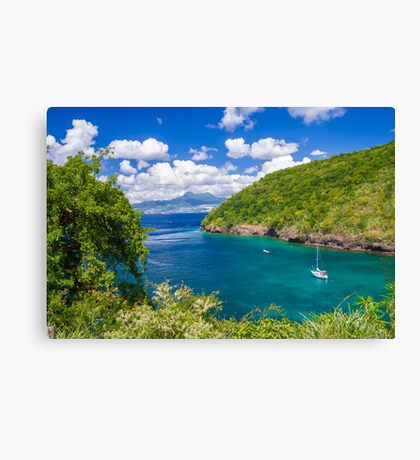 Tropical Lagoon Canvas Print