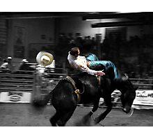 Hangin On II Photographic Print