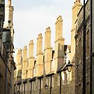 Tudor Buildings, The Backs, Cambridge, England by Steve