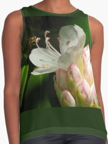 Rhododendron Pollination Contrast Tank