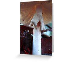 'Neath The Mushroom Greeting Card