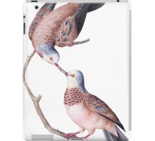 TIR-Brazil-Bird-3 iPad Case/Skin
