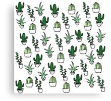 Succulents - Colored Canvas Print