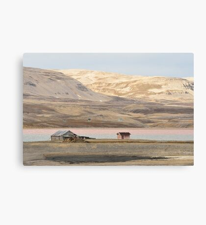 arctic tundra Canvas Print