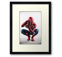 Spider Man Photograph Framed Print
