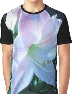 Pink Amaryllis Graphic T-Shirt