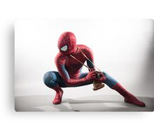 Spider Man Photography 2 Canvas Print