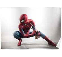 Spider Man Photography 2 Poster