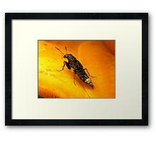 """I Wish I Was A Real Firefly"" Framed Print"