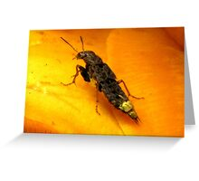 """I Wish I Was A Real Firefly"" Greeting Card"