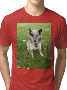 Blue, a working dog Tri-blend T-Shirt