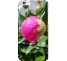deep pink bud iPhone Case/Skin