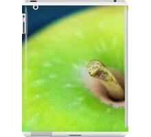 Apple iPad Case/Skin