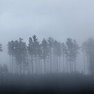 Morning Mist by BlaizerB