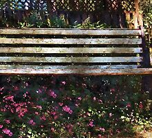 Bench in Blossom by RC deWinter