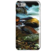 River in the Black Forest iPhone Case/Skin
