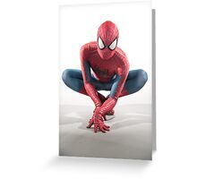 Spider Man Photography 5 Greeting Card