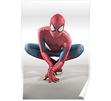 Spider Man Photography 5 Poster