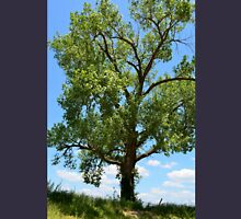 Lovely old tree along the Cuivre River near Moscow Mills, MO Unisex T-Shirt