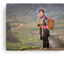 Vietnamese woman in landscape Canvas Print