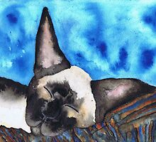 SLEEPING SIAMESE by Hares & Critters