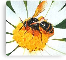 Save The Bees 2 Canvas Print