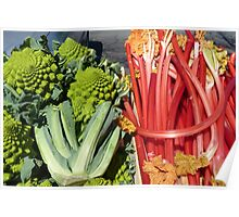 COLOURFUL VEGETABLES Poster
