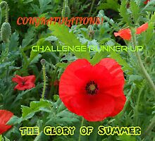 Glory of Summer Challenge Runner-up Banner by BlueMoonRose
