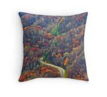 Curvy~Road Throw Pillow