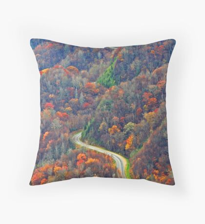 Curvy~Road Throw Pillow