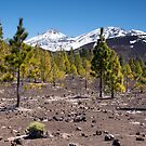 Over the Lava Fields and Tree Line to the Peak of El Teide by Kasia-D