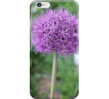 alium onion flower close to iPhone Case/Skin