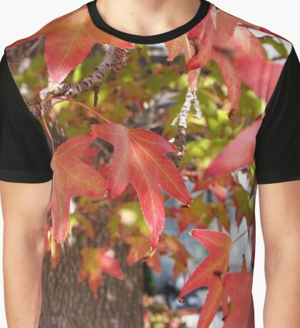 Red Leaves in Autumn Graphic T-Shirt
