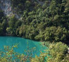 Jungle River in Croatia Sticker
