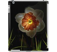 4225 iPad Case/Skin