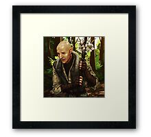 A walk Framed Print