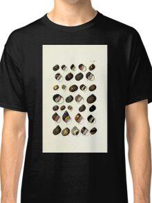 Thesaurus conchyliorum Monographs of genera of shells George Brettingham Sowerby 1887 V1-V5 114 Classic T-Shirt